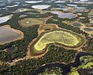 Pantanal: maior área úmida do planeta