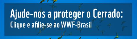 Ajude-nos a proteger o Cerrado. / ©: WWF-Brasil