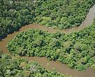 O Parque Nacional Montanhas do Tumucumaque (AP) é uma das unidades de conservação apoiadas pelo Arpa.