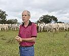 Organic cattle ranching farm, fazenda, pecuária, orgância, Brasil