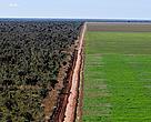 Foto aérea de plantação de soja na região de Ribeiro Gonçalves, Piauí.