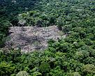 Vista área de desmatamento no estado do Acre.