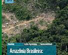 Publicação Amazônia Brasileira: desafios para uma efetiva política de combate ao desmatamento