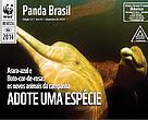 Revista Panda Brasil - Edição 12