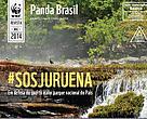 Revista Panda Brasil 10