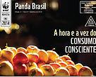 Revista Panda Brasil 11