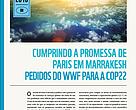 COP22 deve esclarecer regras de implementação e definir caminho para aumento de ambição