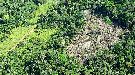 / ©: WWF-Brasil/Cláudio Maretti