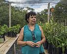 Nilva Vieira da Paz, diretora da EFA Tabocal, no viveiro de espécies do Cerrado, implementado pelo WWF-Brasil