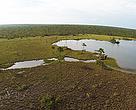 Imagem captada por Ecodrone na região do Mosaico Sertão Veredas Peruaçu