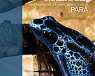 Capa da publicação Efetividade de Gestão das Unidades de Conservação do Estado do Pará