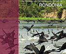Capa da publicação Efetividade de Gestão das Unidades de Conservação do Estado de Rondônia