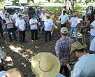 The Field day was held on the São José Ranch/Aguapé Lodge, which is located 50 km from the municipality of Aquidauana in the State of Mato Grosso do Sul