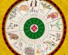 Capa do Calendário Huní Kuín - Atividades 2016