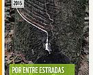 Por Entre Estradas e Varadouros - O Caminho das Pedras para a Produção Sustentável da Borracha Amazônica