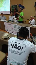 O cacique Aretina Tiriy&#243; foi uma das lideran&#231;as presentes no encontro de mosaicos de &#225;reas protegidas<br />&copy;&nbsp;WWF-Brasil/ Jorge Eduardo Dantas&#8221; border=&#8221;0&#8243; align=&#8221;left&#8221; hspace=&#8221;4&#8243; vspace=&#8221;2&#8243; /></a><em><strong>Por Jorge Eduardo Dantas</strong></em></p> <p><strong>Manaus (AM) </strong>- Os participantes do <em>primeiro Encontro de Mosaicos de &#193;reas Protegidas da Regi&#227;o Norte</em>, encerrado esta semana na capital amazonense, buscam o reconhecimento de quatro novos mosaicos de &#225;reas protegidas naquela regi&#227;o.&nbsp;</p> <p>Este reconhecimento, que deve ser feito pelo poder p&#250;blico (Uni&#227;o e estados), refor&#231;aria a gest&#227;o e prote&#231;&#227;o de mais de 24 milh&#245;es de hectares de &#225;reas naturais na Amaz&#244;nia, como florestas, mangues, savanas, lagos e plan&#237;cies.</p> <p>As propostas de cria&#231;&#227;o de novos mosaicos est&#227;o em diferentes fases de articula&#231;&#227;o, e contemplam a cria&#231;&#227;o do: mosaico da Calha Norte, que visa proteger a calha norte do rio Amazonas, entre o Par&#225; e o Amap&#225;, que somaria 11 milh&#245;es de hectares; do mosaico do Sul do Amazonas, que busca integrar unidades de conserva&#231;&#227;o e Terras Ind&#237;genas num conjunto de 4 milh&#245;es de hectares; do mosaico da Terra do Meio, no centro do Par&#225;, com 8 milh&#245;es de hectares; e do Mosaico da Rebio do Gurupi, entre o Par&#225; e o Maranh&#227;o, que integraria 1,83 milh&#245;es de hectares.</p> <p><strong>Benef&#237;cios</strong></p> <p>O reconhecimento desses mosaicos traria uma s&#233;rie de benef&#237;cios &#8211; como maior escala nos trabalhos de conserva&#231;&#227;o da natureza; gest&#227;o integrada entre diferentes atores sociais, civis e governamentais; otimiza&#231;&#227;o de recursos e integra&#231;&#227;o de infraestrutura; redu&#231;&#227;o de conflitos e fortalecimento do desenvolvimento territorial. &nbsp;</p> <p>