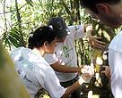 Mais de 600 voluntários participaram da ação de sinalização da trilha