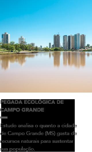 http://bbaguabrasil.com.br/wp-content/uploads/2014/09/pegada_ecologica_campo_grande.pdf