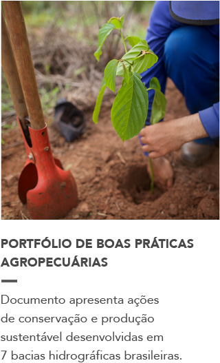 http://www.wwf.org.br/informacoes/noticias_meio_ambiente_e_natureza/?uNewsID=46642