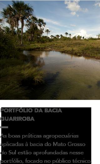 http://d3nehc6yl9qzo4.cloudfront.net/downloads/portfolio___guariroba.pdf