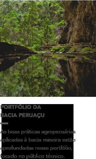 http://d3nehc6yl9qzo4.cloudfront.net/downloads/portfolio___peruacu.pdf
