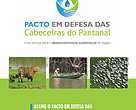 Por que é importante cuidar das águas do Pantanal mato-grossense?