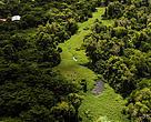 Parque Ecológico do Rio Cocó, um dos maiores parques urbanos da América do Sul e a mais importante área verde e de preservação da cidade de Fortaleza