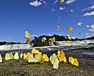 Exposição traz fotos do Parque Nacional do Juruena, quarto maior do país