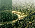 Efetividade de Gestão das Unidades de Conservação do Estado do Acre