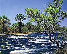 Rio Carinhanha é o quinto maior afluente do famoso Velho Chico, aumentando em 20% o volume de suas águas, e sofre ameaça por implantação de PCHs