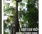 Tudo o que você precisa saber sobre reserva particular do Patrimônio natural - RPPN