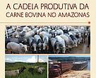 """Capa da publicação """"A Cadeia Produtiva da Carne Bovina no Amazonas"""""""