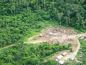Vista aérea de área desmatada no Acre.