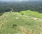 Vista aérea de desmatamento na Amazônia