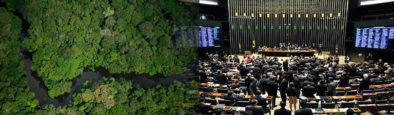 / ©: WWF-Brasil / Zig Koch - Câmara dos Deputados