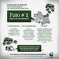 Entenda os riscos das mudanças no Código Florestal. Fato 1. / ©: WWF-Brasil/Nelson Cordeiro