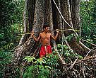 A Rede WWF repudia qualquer ameaça ou ato violento contra indivíduos e comunidades indígenas da Amazônia