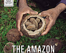 "Cover for the book ""The Amazon we want - Integrating Conservation and Development"""
