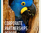 Capa Corporate Partnerships Report 2018
