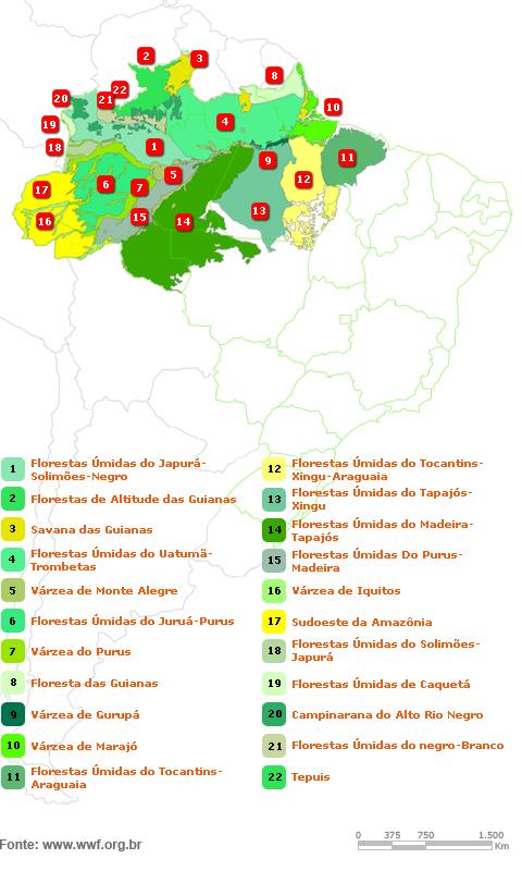Mapa Bioma Amazônia Wwf Brasil